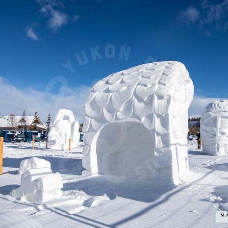 YR2021 SnowCarvingsIMG_1210-sm.jpg