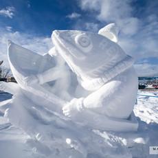 YR2021 SnowCarvingsIMG_1249-sm.jpg