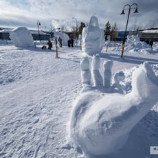 YR2021 SnowCarvingsIMG_1257-sm.jpg