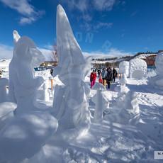 YR2021 SnowCarvingsIMG_1231-sm.jpg