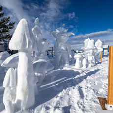 YR2021 SnowCarvingsIMG_1222-sm.jpg