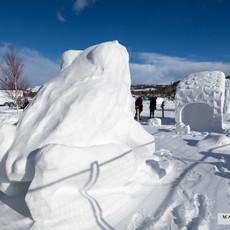 YR2021 SnowCarvingsIMG_1211-sm.jpg