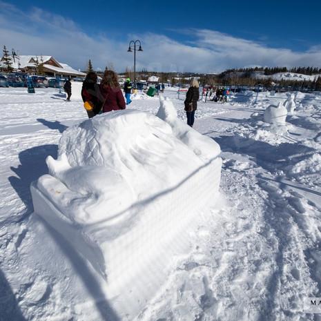 YR2021 SnowCarvingsIMG_1193-sm.jpg