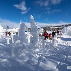 YR2021 SnowCarvingsIMG_1235-sm.jpg