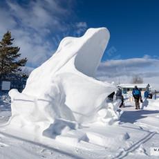 YR2021 SnowCarvingsIMG_1208-sm.jpg