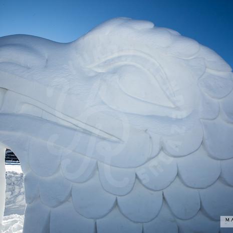 YR2021 SnowCarvings_F1A8037-sm.jpg