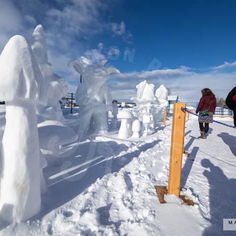 YR2021 SnowCarvingsIMG_1223-sm.jpg