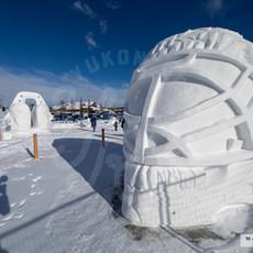 YR2021 SnowCarvingsIMG_1197-sm.jpg
