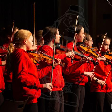YSR2020 PerfStage Fiddleheads_F1A0381-sm