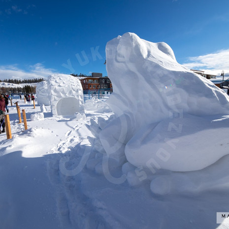 YR2021 SnowCarvingsIMG_1214-sm.jpg