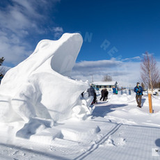 YR2021 SnowCarvingsIMG_1207-sm.jpg
