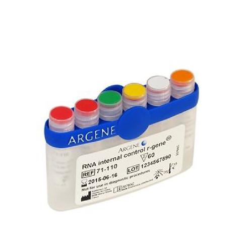 DNA Internal ADN R-GENE® et RNA Internal Control ARN R-GENE®