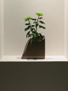 Fragment vase bone 5 main.jpg