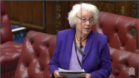 Baroness Hayman speaks Jan 2020 during the Pension Bill. Image via Parliament.tv