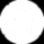 P4P_Logo_white.png