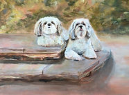 Cheryles dogs for Christmas.jpg