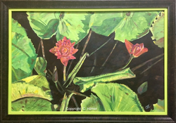 Vibrant Lillies