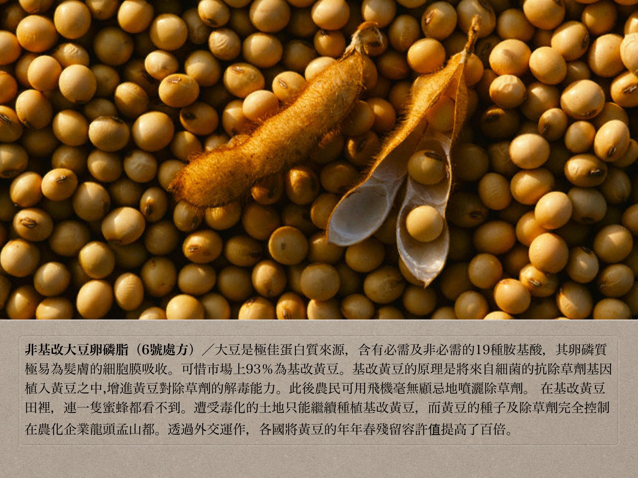 6號處方之非基改大豆