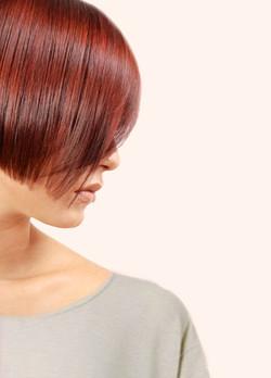 生物動力染髮