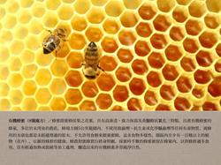 8號處方之有機蜂蜜