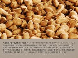 8號處方之人道採購木乳木乳