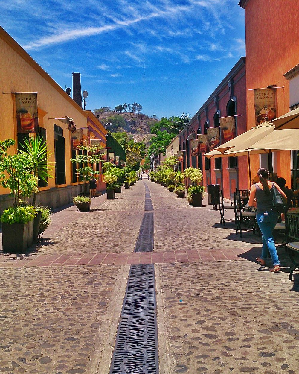 este lindo andador te lleva a la casa tequilera de Jose Cuervo para descubrir sus procesos y comprar sus productos, una te las tequileras mas importantes de Mexico