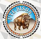 Ute Bison