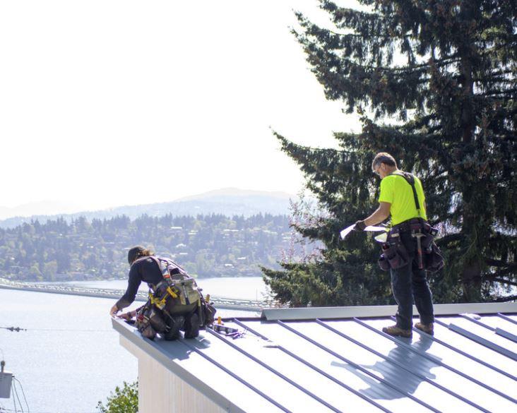 roofing windows 1.JPG