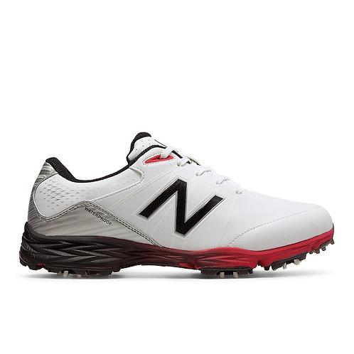 NBG2004