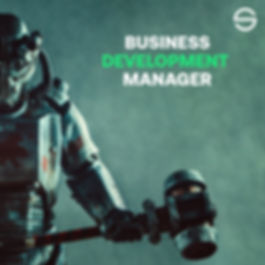 Bis Dev Manager.jpg