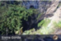 sierra-groda-893474.jpg