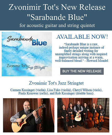 Zvonimir Sarabande Blue Release Banner.j