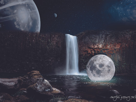 Rhino and Floating Moon