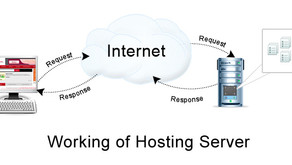 WEB DOMAIN REGISTRATION AND WEB HOSTING EXPLAINED