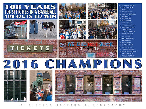 """24"""" x 18"""" Chicago Cubs 2016 World Series Champions"""