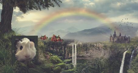 Beyond the Rainbow Bridge