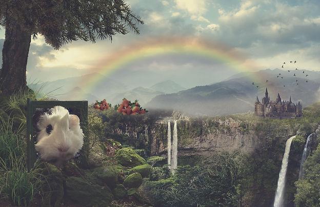 Beyond the Rainbow Bridge.jpg