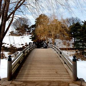 Chicago Botanical Garden Bridge Photo