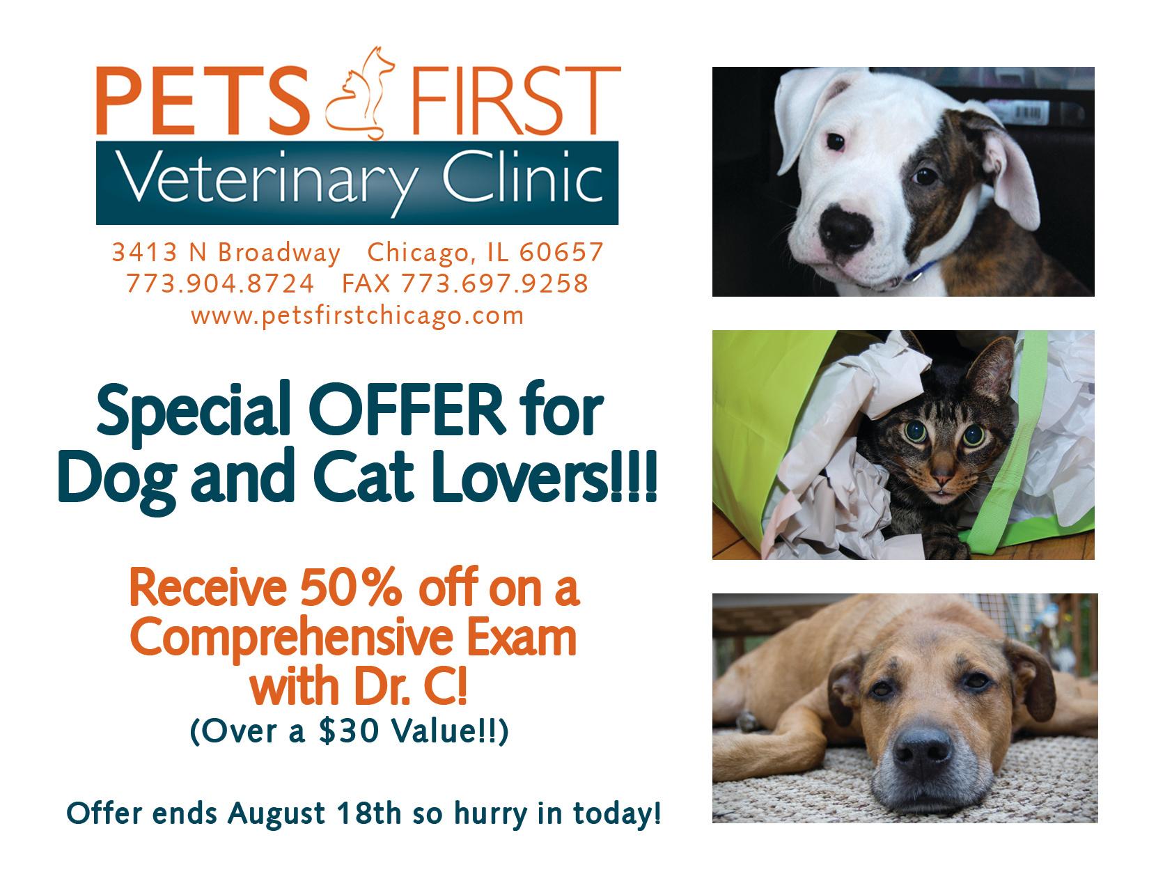 Pets First Special Offer Postcards