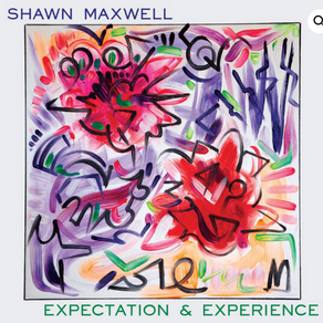 """Review: Shawn Maxwell's """"Expectation and Experience"""""""
