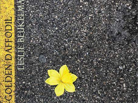 """CD Review: Leslie Beukelman """"Golden Daffodil"""""""