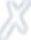 Xtraflex logo white
