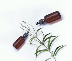 Herbal%20Oils_edited.jpg