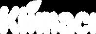 adana klima servisi logo 2.png