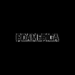 roamerica logo for site.png