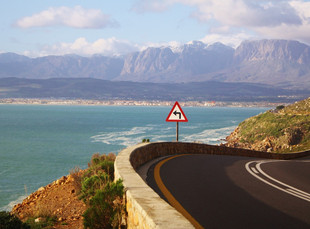 Break the cabin fever with a road trip