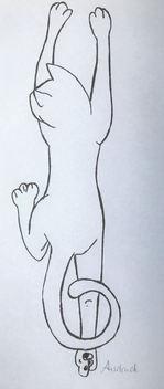Skizze Katze.jpg