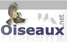 oiseau.net.PNG
