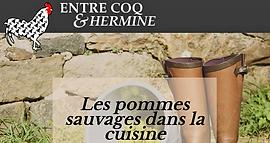 Entre Coq et Hermine site 01.PNG