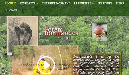 Forêts_Normandes_01.PNG